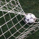 Vittoria in casa per Parma e Fiorentina