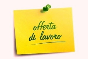 Commesso Specializzato Assistant Store Manager Part Time