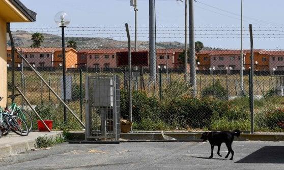 """Nel Cara di Mineo chiuso rimangono 117 cani, appello di Salvini: """"Adottateli"""""""