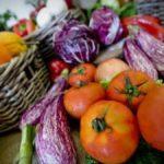 La dieta mediterranea ci aiuta a mangiare sano e sprecare meno