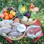 Metà degli italiani a dieta: pigri e golosi ecco come combattiamo i chili di troppo