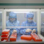 """Coronavirus, Guerra (Oms): """"Vaccino arriverà a inizio 2021"""""""